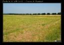 Marche du 14 juillet 2013 - Couvron-et-Aumencourt (3)